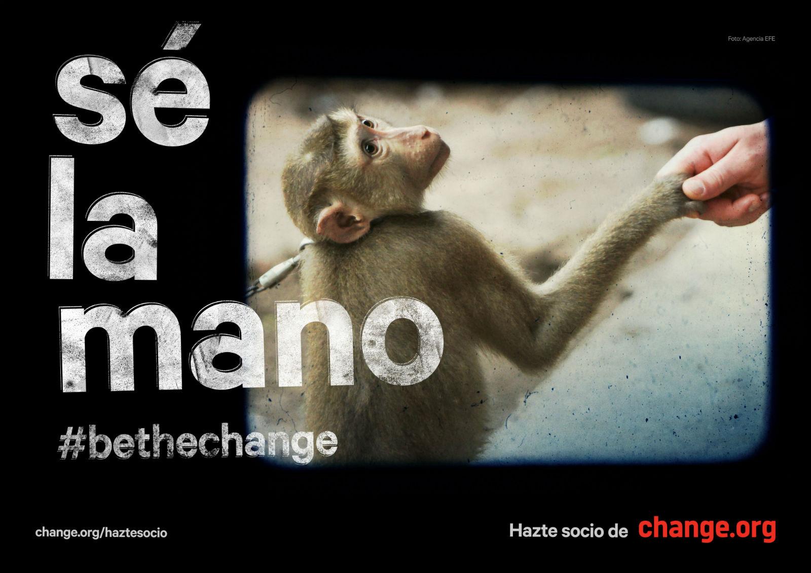 Change.org mano gráfica
